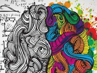 psikolojinin alt alanları